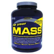 MHP Up Your Mass - 2270g (data do 31.12.)