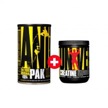 Universal Animal Pak 44pak + Creatine 120g