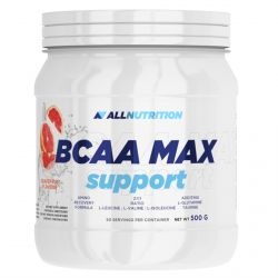 AllNutrition BCAA Max Support 500g