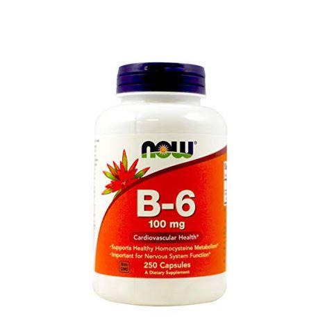 Swanson Vitamin B-6 100mg 250caps.