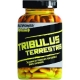 Multipower Tribulus Terrestris 120 kapsułek