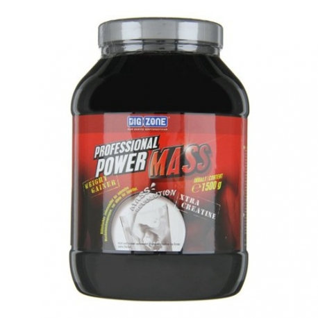 Big Zone Professional Mass 1500 g