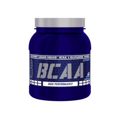 Fit Whey BCAA 500g