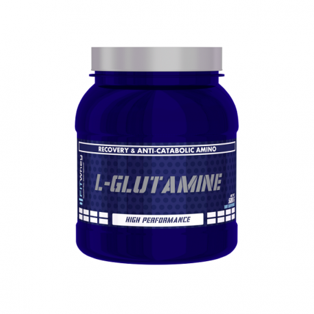 Fit Whey Glutamine 500g