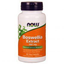 NOW FOODS BOSWELLIA EXTRACT - 60VEG CAPS