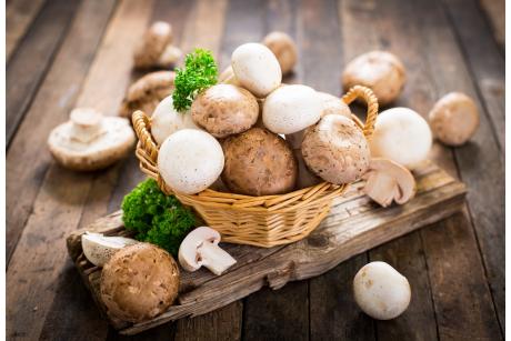 Czy warto włączyć grzyby do diety?