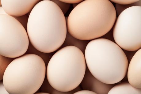 Jaja kurze- Wartościowe źródło białka?