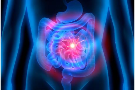 Zdrowe jelita – co jeść, by zapobiec chorobom jelita grubego