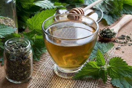 Herbata z pokrzywy cenne źródło zdrowia