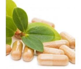 Probiotyki i prebiotyki w suplementacji sportowej