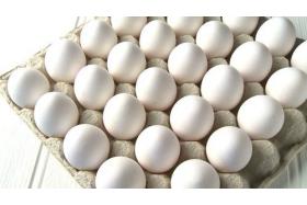 Czy warto przyjmować białko po treningu?